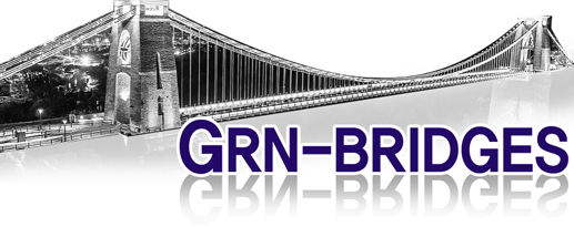 GRN-BRIDGES